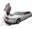 上海汽车租赁公司林肯婚车租赁车型图片|林肯婚车