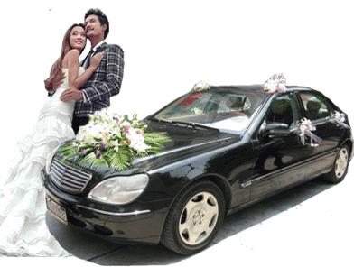 老款奔驰S600婚车